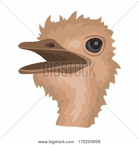 Ostrich icon in cartoon design isolated on white background. Realistic animals symbol stock vector illustration.