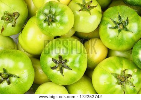 Green Tomato, Close Up
