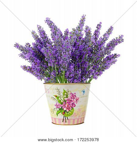 Tin vase with lavender flowers isolated on white background.