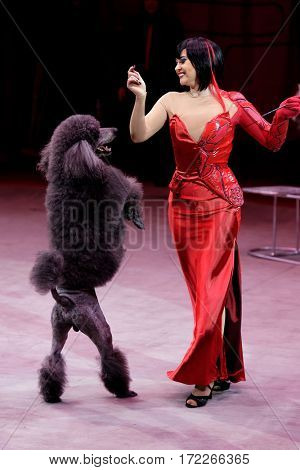 ST. PETERSBURG, RUSSIA - FEBRUARY 3, 2017: Elena Petrikova and her trained dog in the dress rehearsal of the circus program CircUS 2.0. The program reflects the vision of circus art of XXI century