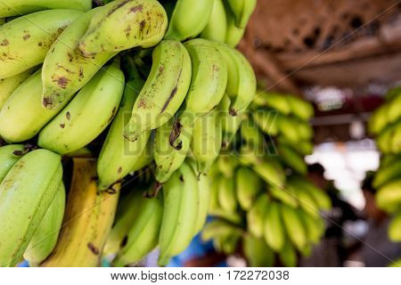 Bunch of ripe yellow and green banana on marketplace