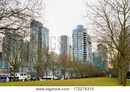 Vancouver Canada - January 28 2017: Trees in park in winter with skyscrapers in background in downtown Vancouver