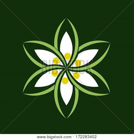 Vector sign abstract edelweiss, isolated illustration in green