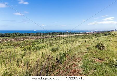 Coastal Landscape Of Natural Green Vegetation In Durban