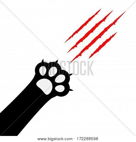 Black cat paw print leg foot. Bloody claws scratching animal red scratch scrape track. Corner diagonal. Cute cartoon character body part silhouette. Baby pet collection. Flat White background. Vector