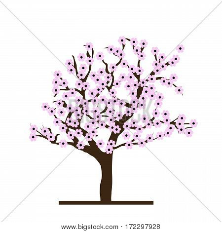 Spring concept with stylized cherry tree on white background