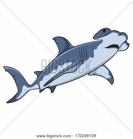 Vector color illustration of the hammerhead shark. Isolated object on a white background.