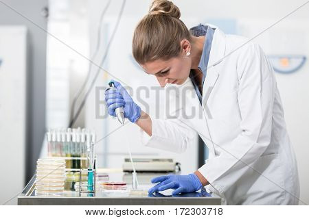 Research operator preparing samples in petri dishes