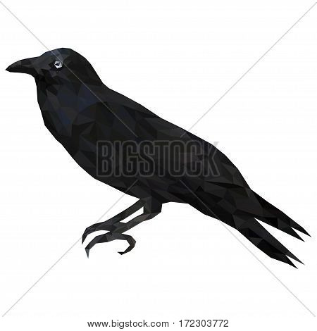 Low poly illustration of black raven. Black bird crow - isolated decorative element. To make halloween decorations.