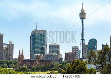 Sydney Cityscape With St Marys Cathedral And Sydney Tower
