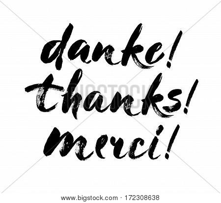 Thank you lettering in english french german Thanks Merci Danke Hand drawn vector phrase. Handwritten modern brush calligraphy for invitation and greeting card t-shirt prints and posters