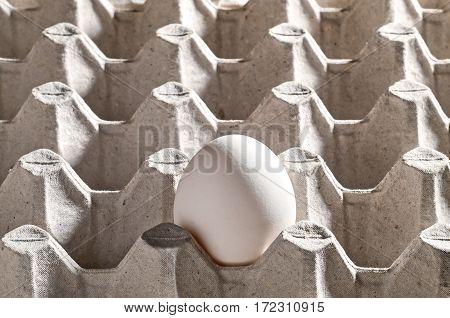 Chicken White Egg In A Cassette