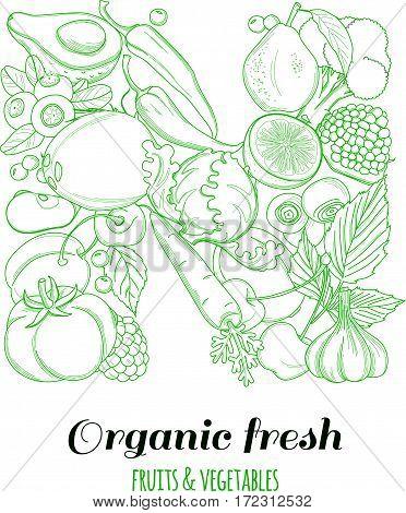 Letter N pattern logo of groceries organic farm fresh fruits and vegetables. Vector illustration logotype. Outline line flat style design. White backdrop.