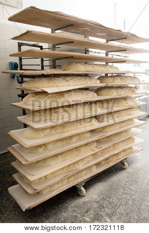 Dough Proving On Wooden Tray