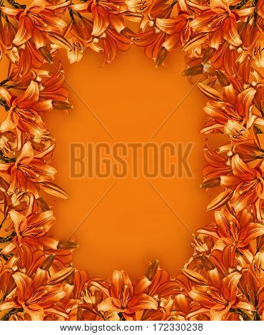 background with orange frame garden lily closeup and copy space