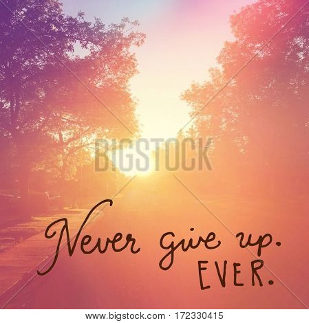 Inspirational Quote -  Never give up ever.