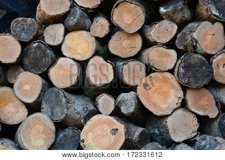 Pile of wood cut timber background .