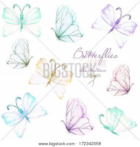 Set, collection of watercolor tender butterflies, hand drawn isolated on a white background