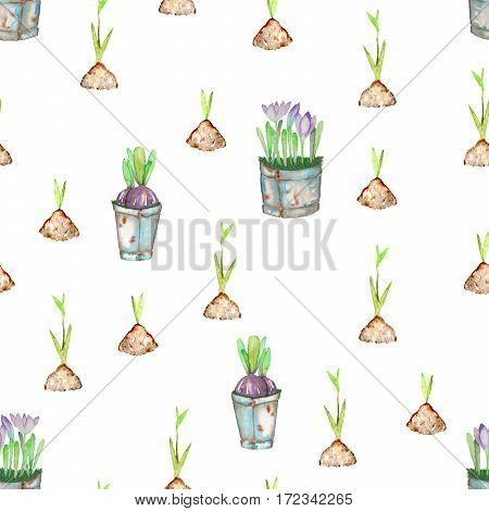 Seamless pattern with watercolor spring green plant sprouts from the soil and crocus flowers in the buckets, hand drawn isolated on a white background