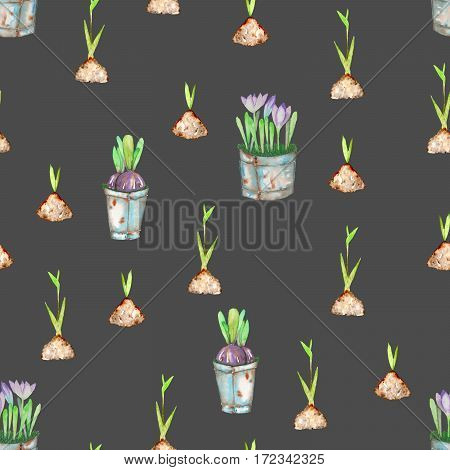 Seamless pattern with watercolor spring green plant sprouts from the soil and crocus flowers in the buckets, hand drawn isolated on a dark background