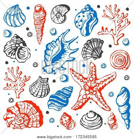 Sea marine animals and shells vector illustration. Spiral tropical mollusk decoration. Exotic snail aquarium beauty scallop nature seashell hand drawn sketch.