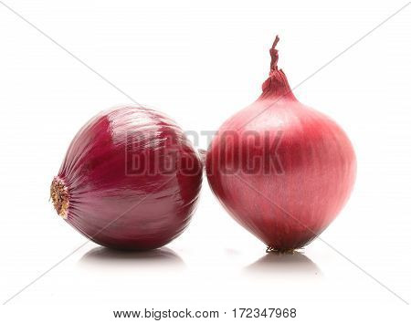 red onion isolated on white background in studio
