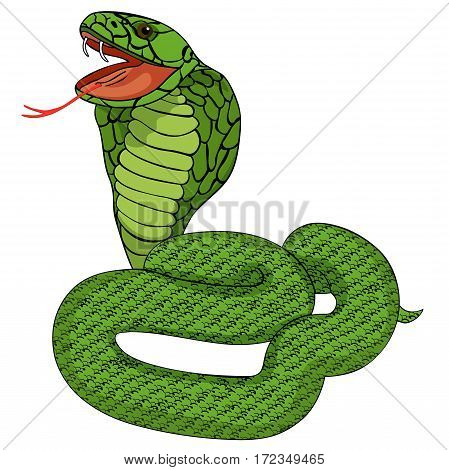 Green King Cobra With Fangs. Vector Illustration