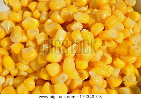 Macro detail of a heap of yellow corn (maize) as a symbol of sweet healthy organic vegetable