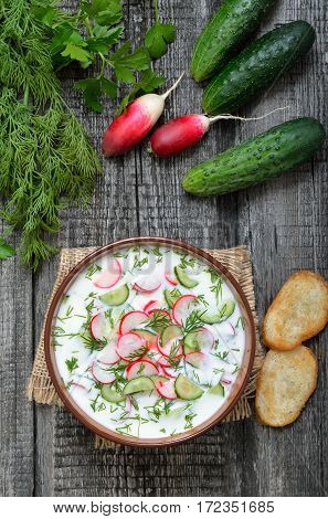 Yoghurt cold soup and fresh cucumbers and radish top view