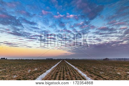 Snow Trails on Farmland with Scenic Twilight Sky Above