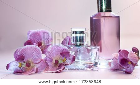 bottle of women's perfume and a delicate orchid flower on a pink background