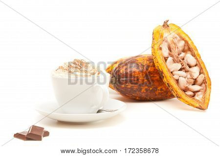 Studio shot of cup of hot chocolate with cocoa pods on white