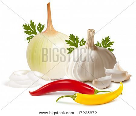 Photo-realistic vector illustration. Spice.