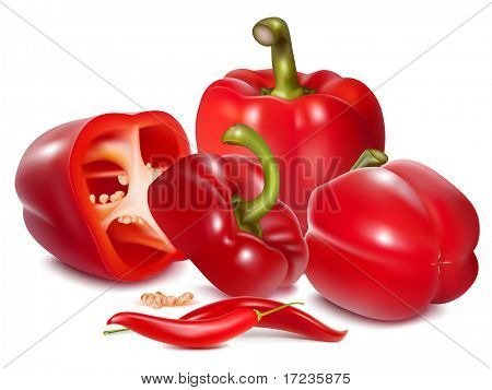 Photorealistic vector illustration of red sweet pepper.