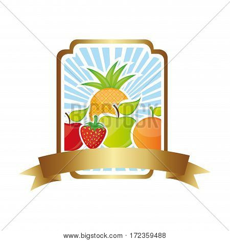 colorful silhouette rectangle decorative heraldic frame with still life fruits vector illustration