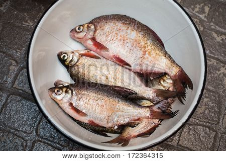 River fish lies in the pelvis. Carve fish. Cook food. Silver bream