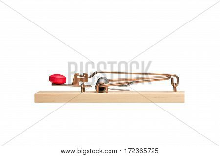 Red pill as bait in a mousetrap. Studio close-up isolated on white. Concepts could include addiction danger desire risk others.