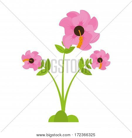 geranium flower season spring vector illustration eps 10