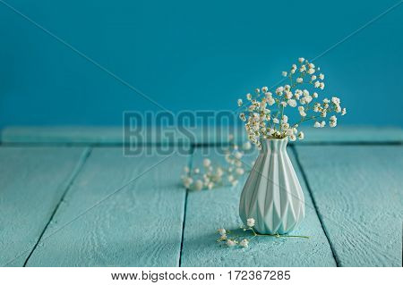 Baby's breath - gypsophilia paniculata - in vase on blue background.
