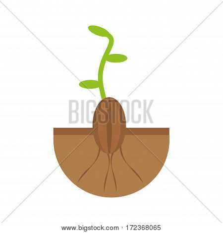 plant grow flourishes natural vector illustration eps 10