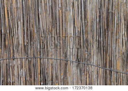 background of an old battered reeds, tied up wire