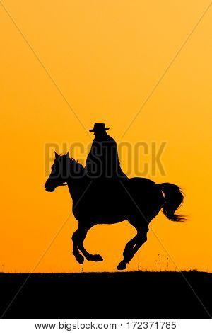Rider Man And Jumping Horse In The Sunset