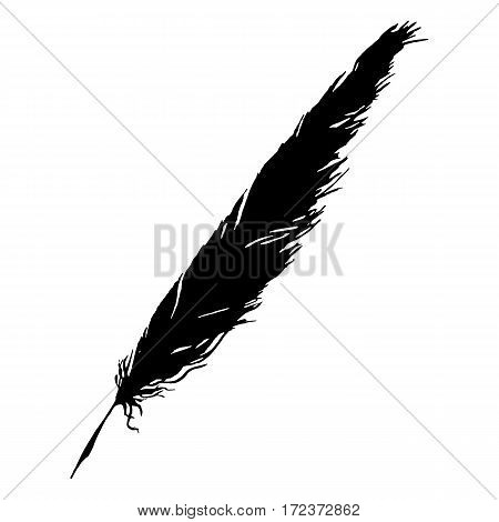Silhouette black and white monochrome feather isolated vector
