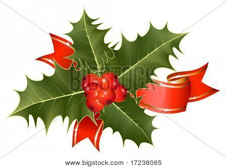 Vector. Christmas decoration: holly with berries and ribbon.