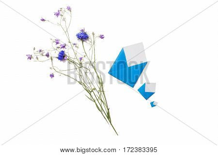 Wildflowers. Blue knapweed small envelopes isolated on white background. Three letters. Write a letter. Greeting card. Copyspace flat lay top view.