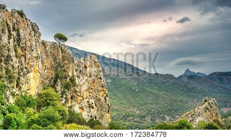 Rocky view. landscape photo: View over the valleys of Puig Campana in the region of Alicante, Spain.