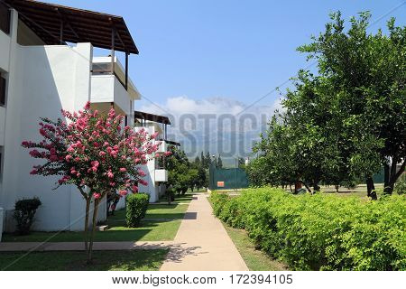 The bungalows along the alley with tangerine trees. Turkey, Kemer