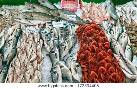 Fish counter in the Turkish city market. Kemer, Turkey