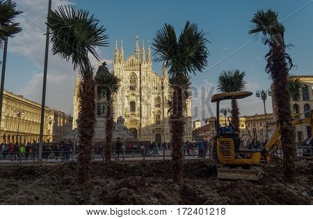 Milano, Italy - February 17, 2016: Palm trees installation at Duomo square. The appearance of a series of palm trees by Duomo cathedral has caused reactions with opposers trying to burn them.
