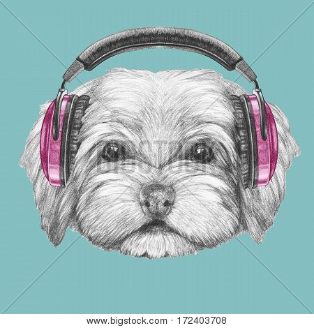 Portrait of Havanese with headphones. Hand drawn illustration of dog.